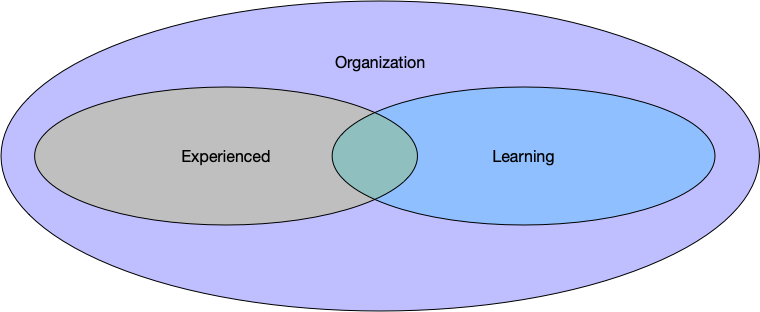 Your experienced and learning tasks are entirely within the organization's known skills.