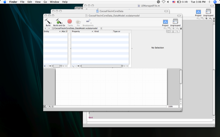 Image of the entity in CoreData management GUI.